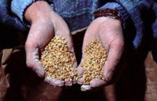 L'Etat continue d'organiser le racket des agriculteurs