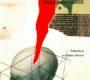 """""""Sans concession"""", le nouvel ouvrage de René BALME"""